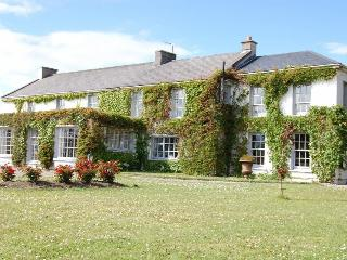 5 bedroom House with Internet Access in Kilmallock - Kilmallock vacation rentals