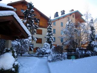 Chamonix Apartments - SavoyD - Chamonix vacation rentals