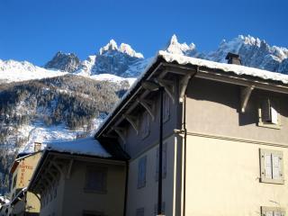 Chamonix Apartments - AndrosaceA - Chamonix vacation rentals