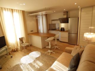 1 bedroom full center 2 steps Palais, Beaches HO41 - Cannes vacation rentals