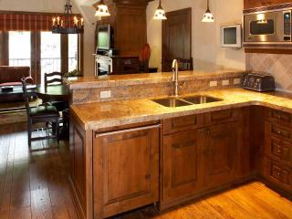 Hit the Slopes at the Hyatt Grand Aspen!!!! - Aspen vacation rentals