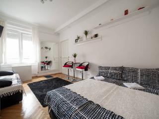 Bright Condo with Internet Access and A/C - Budapest vacation rentals