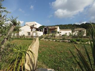 Couleur du sud: Villa spacieuse et naturelle - Bize-Minervois vacation rentals