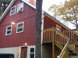 Pocono Mountain Fun that is close to Everything. - Mount Pocono vacation rentals