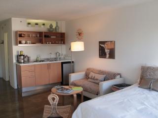 Hidden Gem Apartment in Downtown Los Angeles - Los Angeles vacation rentals