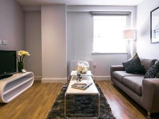Caftop_Saco_Apartment - Manchester vacation rentals