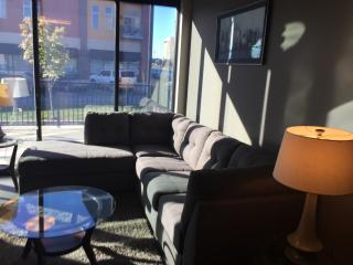 Executive 1 BR  Loft - West Glen!!  1129 - West Des Moines vacation rentals