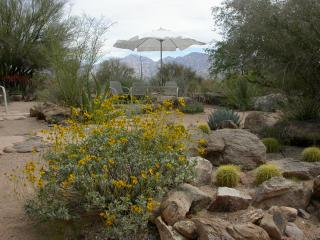 Gorgeous Guest house with A/C and Parking - Oro Valley vacation rentals