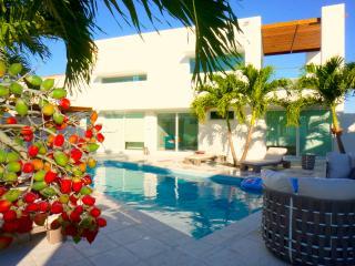 New Modern Oceanfront Villa I - George Town vacation rentals