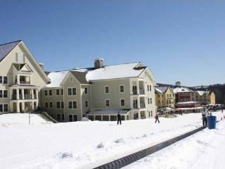 Ski-in/out Luxury 3 Bdrm Okemo Condo @ JacksonGore - Ludlow vacation rentals