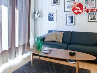 Modern apartment in the heart of Reykjavík - 1519 - Reykjavik vacation rentals