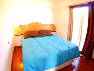 2 Bedroom Apartment with 2 terraces Ocean View - Pichilemu vacation rentals
