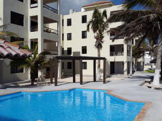 Nice Condo with Internet Access and House Swap Allowed - Progreso vacation rentals