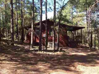 Cozy 2 bedroom Cottage in Pinetop with Television - Pinetop vacation rentals