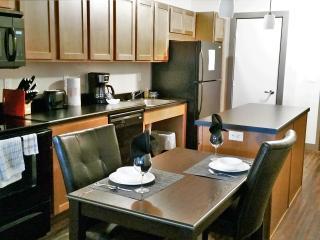Luxury Studio in West Glen!! 3300 - West Des Moines vacation rentals