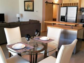 E209 -2 bedroom in downtown Des Moines - Des Moines vacation rentals