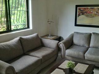 3 bedroom near Zona Colonial & easy access to city - Santo Domingo vacation rentals