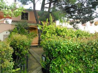 Cozy 2 bedroom Condo in San Teodoro - San Teodoro vacation rentals