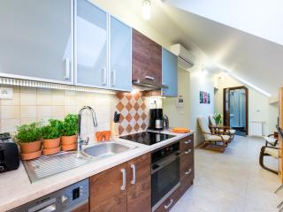 4bdr 2bth Vanilla 3 Apt. 5min to Main Square a/c - Krakow vacation rentals