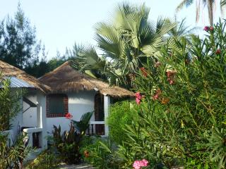 Nema Kuta Garden Camp, 2 - Gunjur vacation rentals