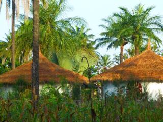 1 bedroom House with Long Term Rentals Allowed in Gunjur - Gunjur vacation rentals