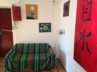 Central, cozy and sunny + Wifi - Turin vacation rentals