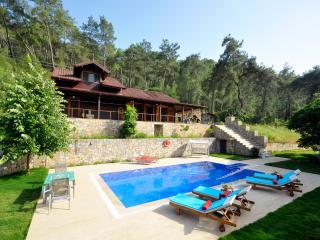 Villa Gazel - Gocek vacation rentals