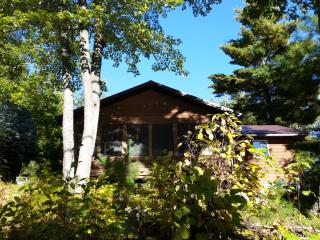 Tranquil Waterfront Cabin On Lake Delta! - Iron River vacation rentals