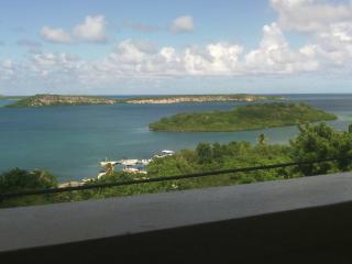 The View Apt - Antigua vacation rentals