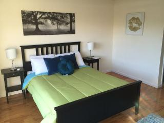 Plenty Of Room For Every One 4bed room/3bath - Brooklyn vacation rentals