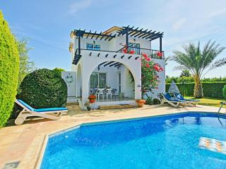 Lemon Grove Villa Ena - Argaka vacation rentals