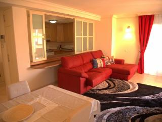Modern apartment with 2 bedrooms - Los Gigantes vacation rentals