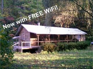 Quiet Cabin Weekly Rates -Pets & Kids Welcome - Sylva vacation rentals