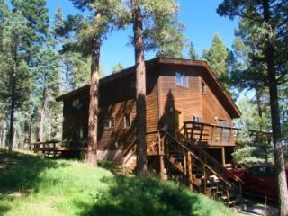Nice 4 bedroom Condo in Angel Fire - Angel Fire vacation rentals