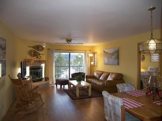 Lake Forest 2 Bed 2 Bath B ~ RA65156 - Frisco vacation rentals
