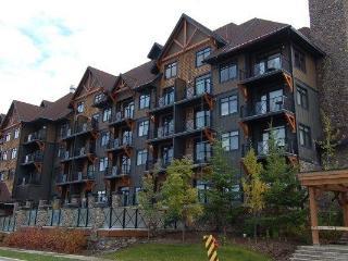Kicking Horse Glacier Mountain Lodge 2 Bedroom Condo - Great Location! - Golden vacation rentals