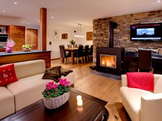 Nice Villa with Internet Access and DVD Player - Zermatt vacation rentals