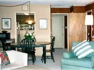 Spacious , Spectacular View on Beech - Beech Mountain vacation rentals
