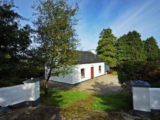 Cozy 2 bedroom Vacation Rental in Ballybofey - Ballybofey vacation rentals
