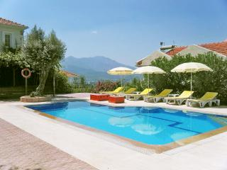 A Countryside villa with private pool - Saklikent vacation rentals