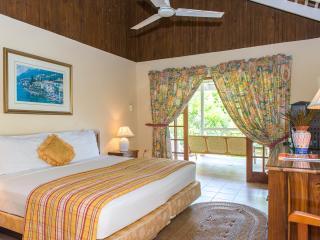 Comfortable 6 bedroom House in Ocho Rios - Ocho Rios vacation rentals