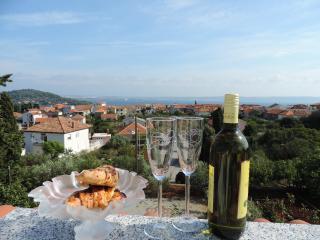 House Red Caesars - Island Ugljan vacation rentals