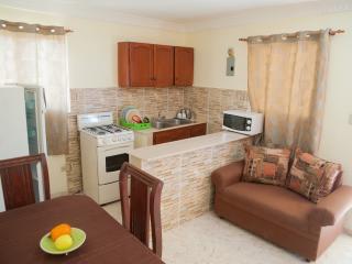 Economic 1-Bedroom Apartment (6 Adults) - Terrace - Santo Domingo vacation rentals