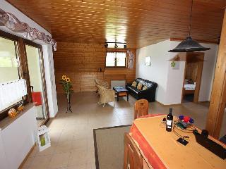 Vacation Apartment in Freiburg im Breisgau - 958 sqft, max. 5 people (# 9011) - Merzhausen vacation rentals