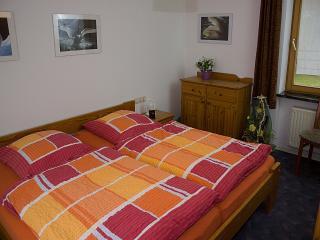 Vacation Apartment in Bad Waldsee - 538 sqft, 1 living / sleeping area, max. 3 Persons (# 9034) - Bad Waldsee vacation rentals