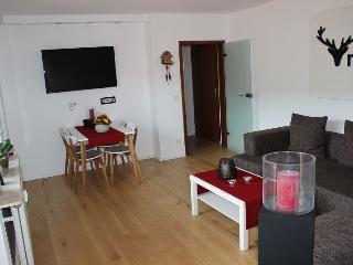 Vacation Apartment in Unterreichenbach - 463 sqft, 1 bedroom, 3 people maximum (# 9217) - Unterreichenbach vacation rentals