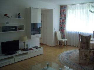 Vacation Apartment in Bad Waldsee - 1 bedroom, 1 living / bedroom, max. 3 persons (# 9247) - Bad Waldsee vacation rentals
