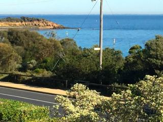 Paddle, Swim, Fish, Shop, Dine (PSFSD) - Mornington vacation rentals