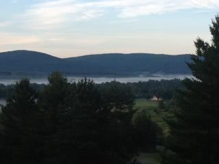 141 - Canaan Valley, Mid-week specials, pets OK. - Canaan Valley vacation rentals