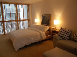 Spencer 3 bedroom 2 bathroom - Dublin vacation rentals